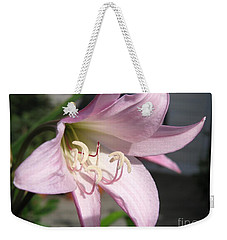 Weekender Tote Bag featuring the photograph Crinum Lily Named Powellii by J McCombie