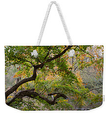 Crooked Limb Weekender Tote Bag by David Troxel