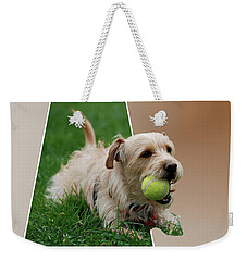 Weekender Tote Bag featuring the photograph Cruz My Ball by Thomas Woolworth
