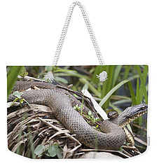 Cuddling Snakes Weekender Tote Bag by Jeannette Hunt