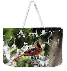 Weekender Tote Bag featuring the photograph Daddy Cardinal by Donna G Smith
