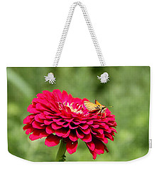 Weekender Tote Bag featuring the photograph Dahlia's Moth by Elizabeth Winter
