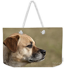 Daisy A Rescued Dog Weekender Tote Bag