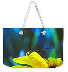Daisy And Dragonfly Weekender Tote Bag by Kay Lovingood