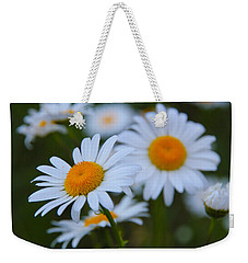 Weekender Tote Bag featuring the photograph Daisy by Athena Mckinzie
