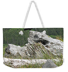 Weekender Tote Bag featuring the photograph Dandelion Crow - On Oregon Coast Driftwood  by Cliff Spohn