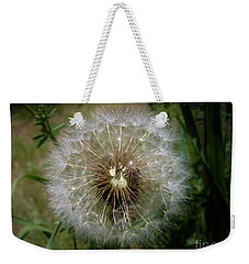 Weekender Tote Bag featuring the photograph Dandelion Going To Seed by Sherman Perry