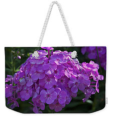 Weekender Tote Bag featuring the photograph Dappled Light by Joseph Yarbrough