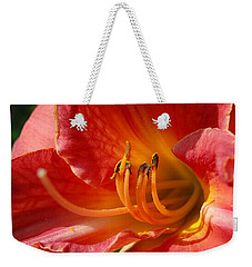 Daylilly Close Up Weekender Tote Bag by Randy J Heath
