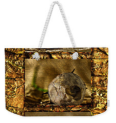 Weekender Tote Bag featuring the photograph Dead Rosebud Triptych by Steve Purnell