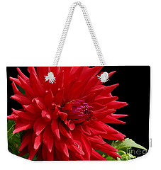 Decked Out Dahlia Weekender Tote Bag by Cindy Manero