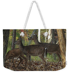 Weekender Tote Bag featuring the photograph Deer In Forest by Lydia Holly