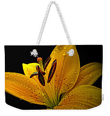 Weekender Tote Bag featuring the photograph Dew On The Daylily by Debbie Portwood