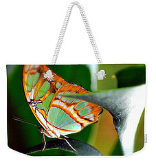 Weekender Tote Bag featuring the photograph Dido Longwing Butterfly by Peggy Franz