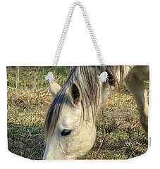 Weekender Tote Bag featuring the photograph Dinner Time by Marty Koch