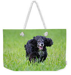 Dog Running On The Green Field Weekender Tote Bag
