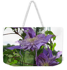 Weekender Tote Bag featuring the photograph Double Clematis Named Crystal Fountain by J McCombie