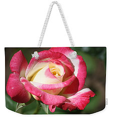 Weekender Tote Bag featuring the photograph Double Delight Rose by Donna G Smith