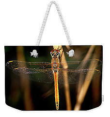 Weekender Tote Bag featuring the photograph Dragon Fly 1 by Pedro Cardona