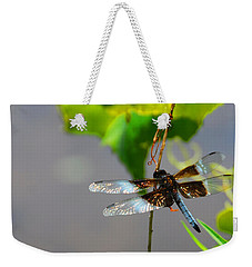 Dragonfly Weekender Tote Bag by Cindy Manero