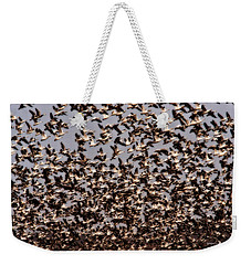 Duck Wall Weekender Tote Bag