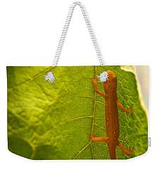 Easterm Newt Nnotophthalmus Viridescens 2 Weekender Tote Bag