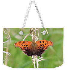 Weekender Tote Bag featuring the photograph Eastern Comma Butterfly by Penny Meyers