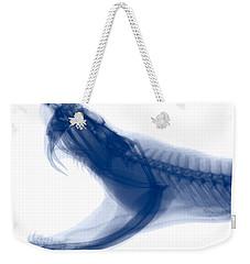 Eastern Diamondback Rattlesnake, X-ray Weekender Tote Bag by Ted Kinsman