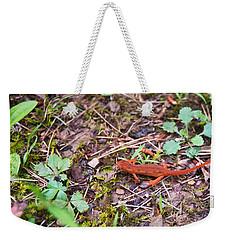 Eastern Newt Juvenile 2 Weekender Tote Bag