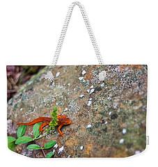 Eastern Newt Juvenile 8 Weekender Tote Bag