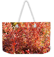 Elegant Fire Bush Weekender Tote Bag