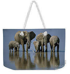 Elephants Weekender Tote Bag