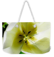 Weekender Tote Bag featuring the photograph Ethereal by Rory Sagner