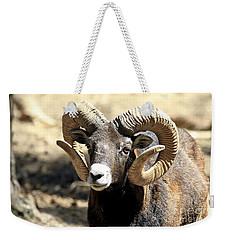 European Big Horn - Mouflon Ram Weekender Tote Bag