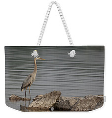 Weekender Tote Bag featuring the photograph Ever Alert by Eunice Gibb