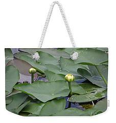 Everglade Beauty Weekender Tote Bag