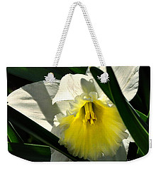 Weekender Tote Bag featuring the photograph Face The Sun by Nava Thompson