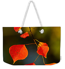 Weekender Tote Bag featuring the photograph Fall Color 2 by Dan Wells