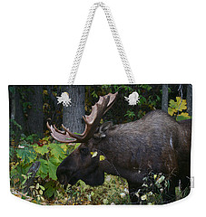Weekender Tote Bag featuring the photograph Fall Master by Doug Lloyd