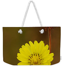 False Dandelion Flower With Wilted Fruit Weekender Tote Bag
