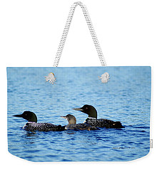 Family Swim 3 Weekender Tote Bag by Steven Clipperton