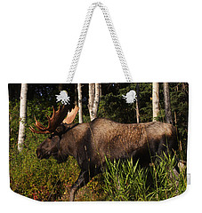 Weekender Tote Bag featuring the photograph Fast Mover by Doug Lloyd