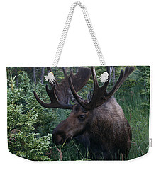 Weekender Tote Bag featuring the photograph Feeding Along by Doug Lloyd