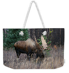 Weekender Tote Bag featuring the photograph Feeding by Doug Lloyd