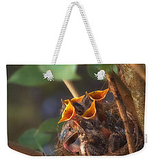 Feeding Time Weekender Tote Bag by Joann Vitali