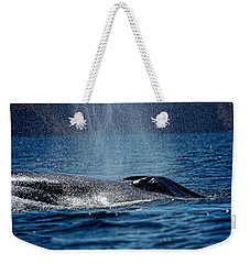 Weekender Tote Bag featuring the photograph Fin Whale Spouting by Don Schwartz
