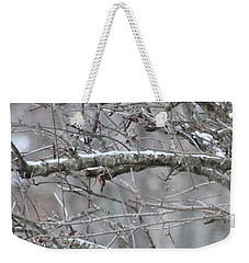 Weekender Tote Bag featuring the photograph First Snow Fall by Kume Bryant