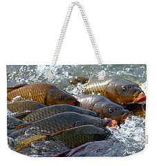 Weekender Tote Bag featuring the photograph Fishing And Hunting by Elizabeth Winter