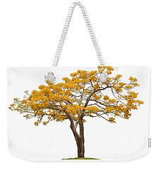 Weekender Tote Bag featuring the photograph Flam Of The Forest by Atiketta Sangasaeng