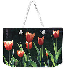 Flared Red Yellow Tulips Weekender Tote Bag by Tom Wurl